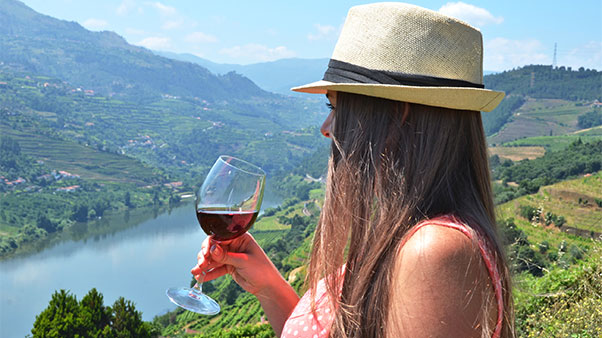 Porutgal Wine Vineyards Douro Valley